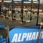 2015 Sydney Fitness & Health Expo - CrossFit Areana Equipment Supplier - Alphafit