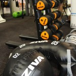 2015 Sydney Fitness & Health Expo - Commercial Gym Equipment Supplier - Ziva