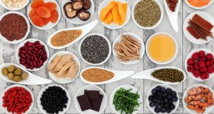 Understanding Antioxidants & Probiotics
