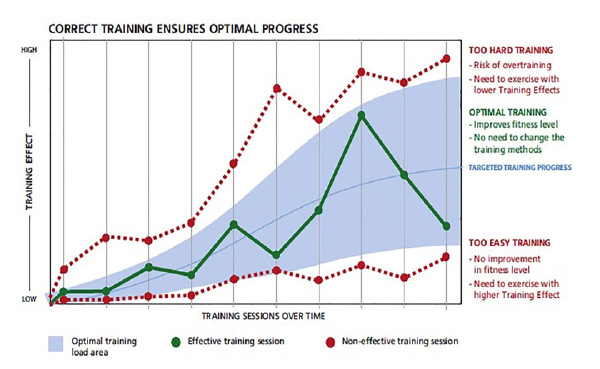 FITPOD - Training Effect Chart