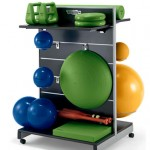 Technogym gym accessories