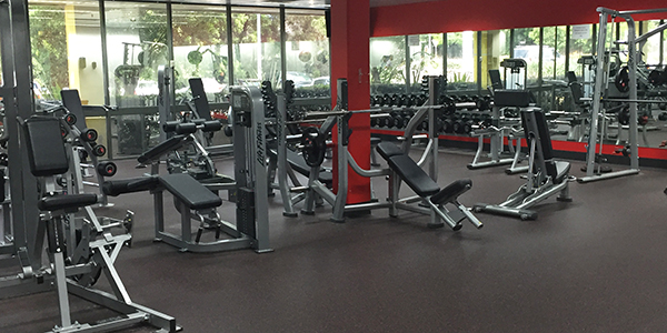 Online Commercial Gym Equipment Auction