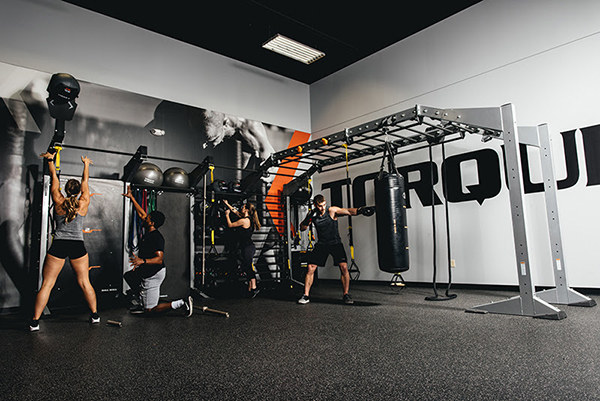 Torque Fitness - Training Rigs - Available from NovoFit